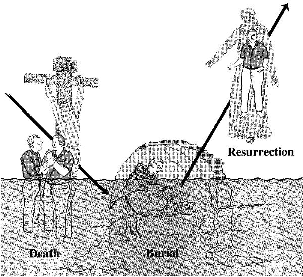 burried with christ in baptism, purpose of baptism, graphic of romans 6